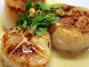 Seared Sea Scallops with Chamomile Beurre Blanc