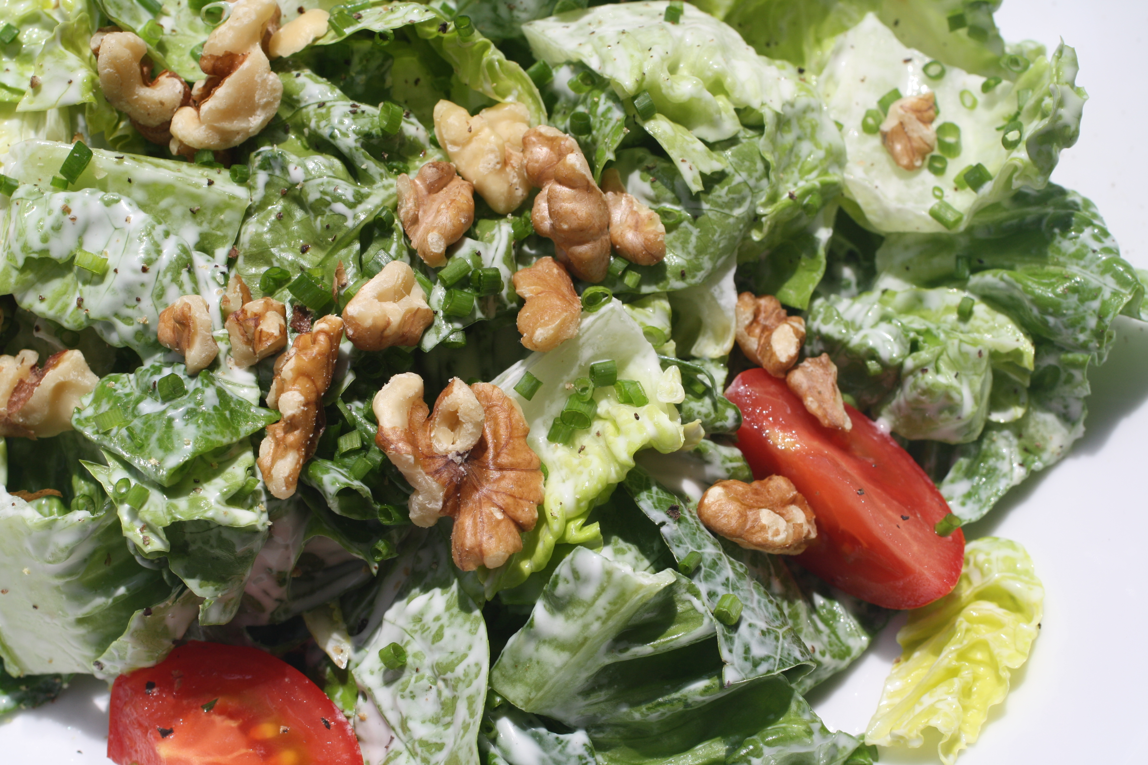 Salad with Creamy Goat Cheese Dressing
