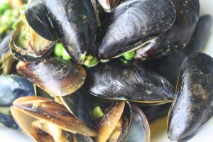 Bombay Mussels