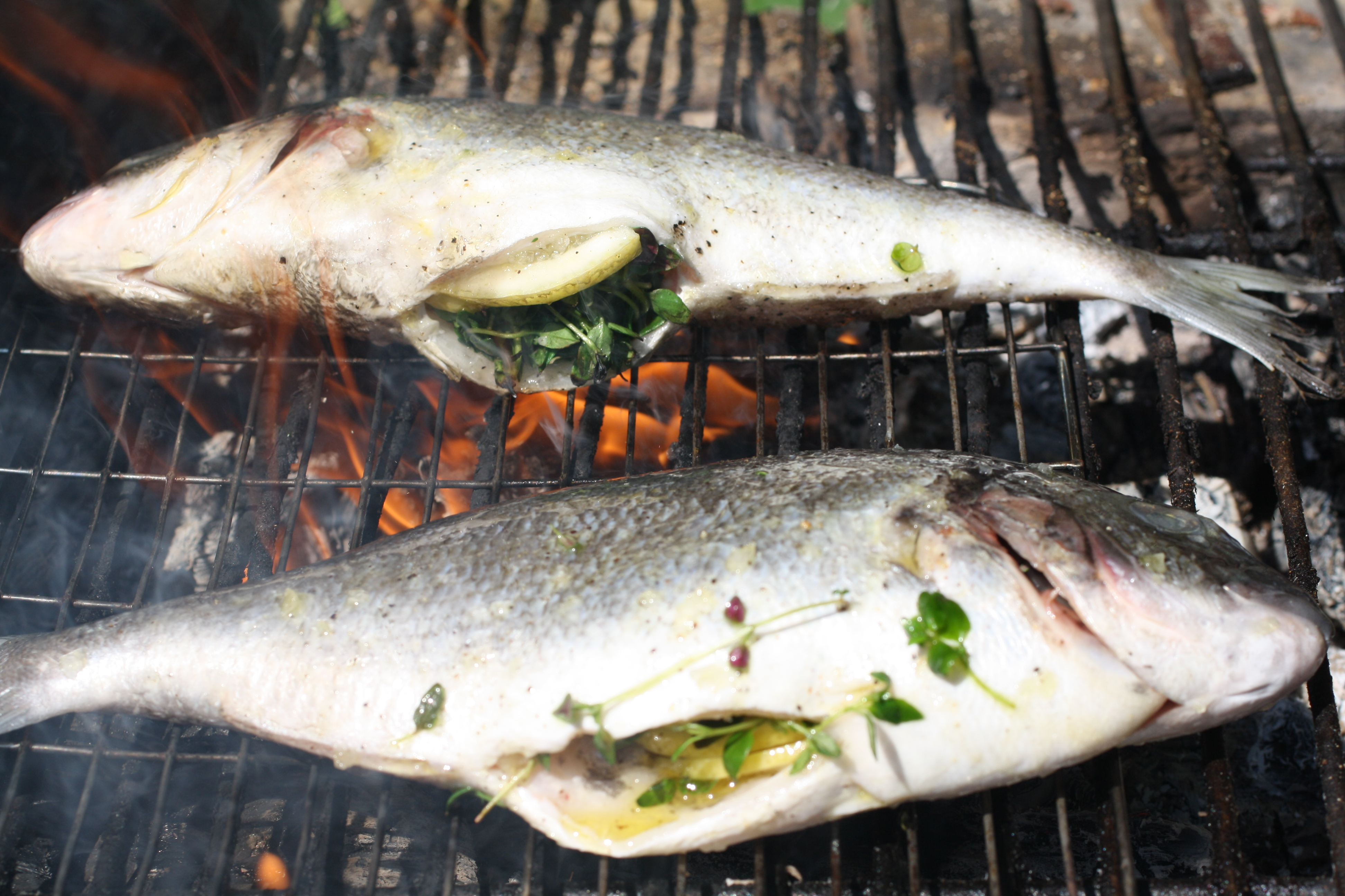 Grilling fish french revolution for Cooking fish on the grill