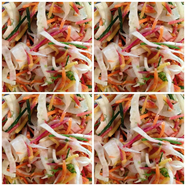 Carrot Fennel Chive Slaw Collage