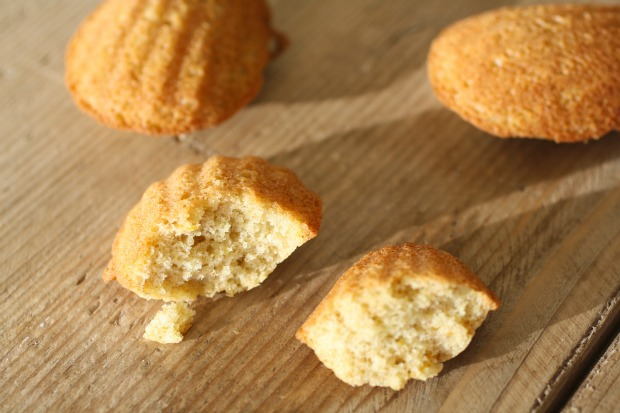 Whole Wheat Olive Oil Madeleines