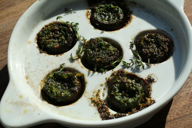 Escargot Mushrooms 1